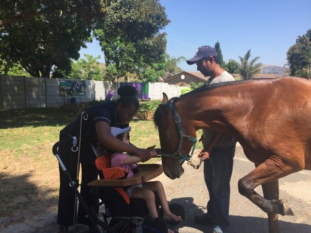 Iris House Equine Therapy Program (HIPPO Therapy)